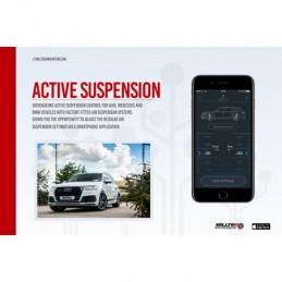 Active Suspension Control...