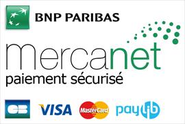 Paiement 100% Sécurisé Mercanet BNP Paribas